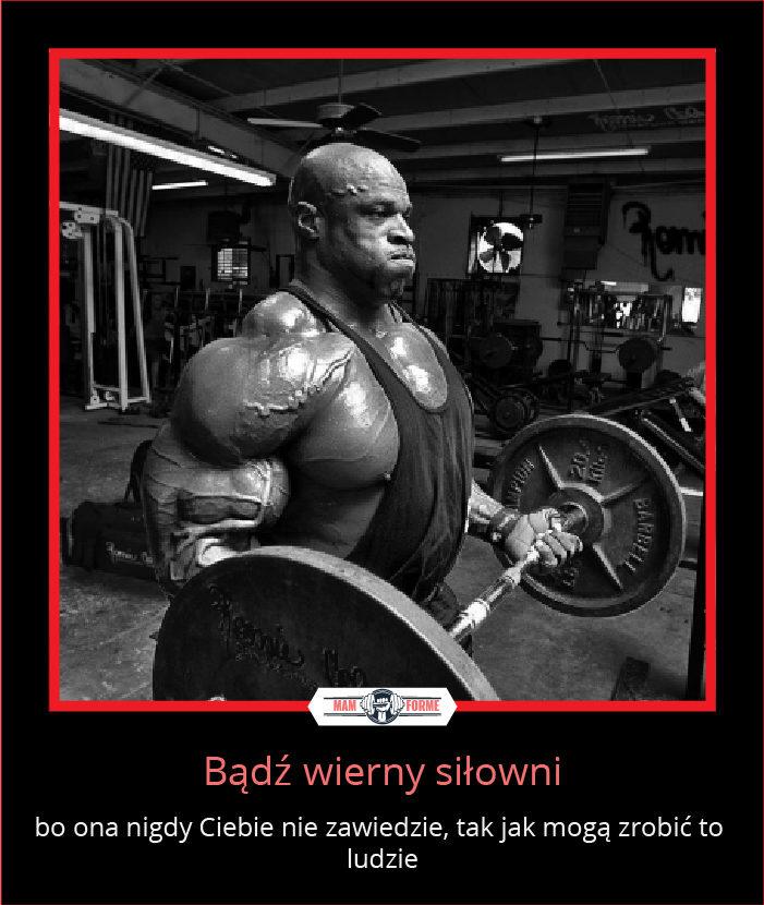 Bądź wierny siłowni...